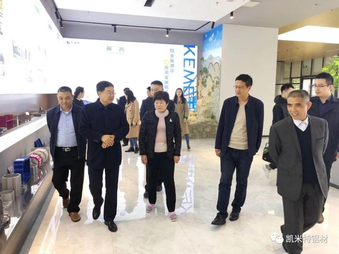 临沂市总工会副主席王秀丽一行莅临凯米特公司新材料厂区考察调研