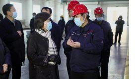 内蒙古自治区主席布小林赴中色锌业进行调研