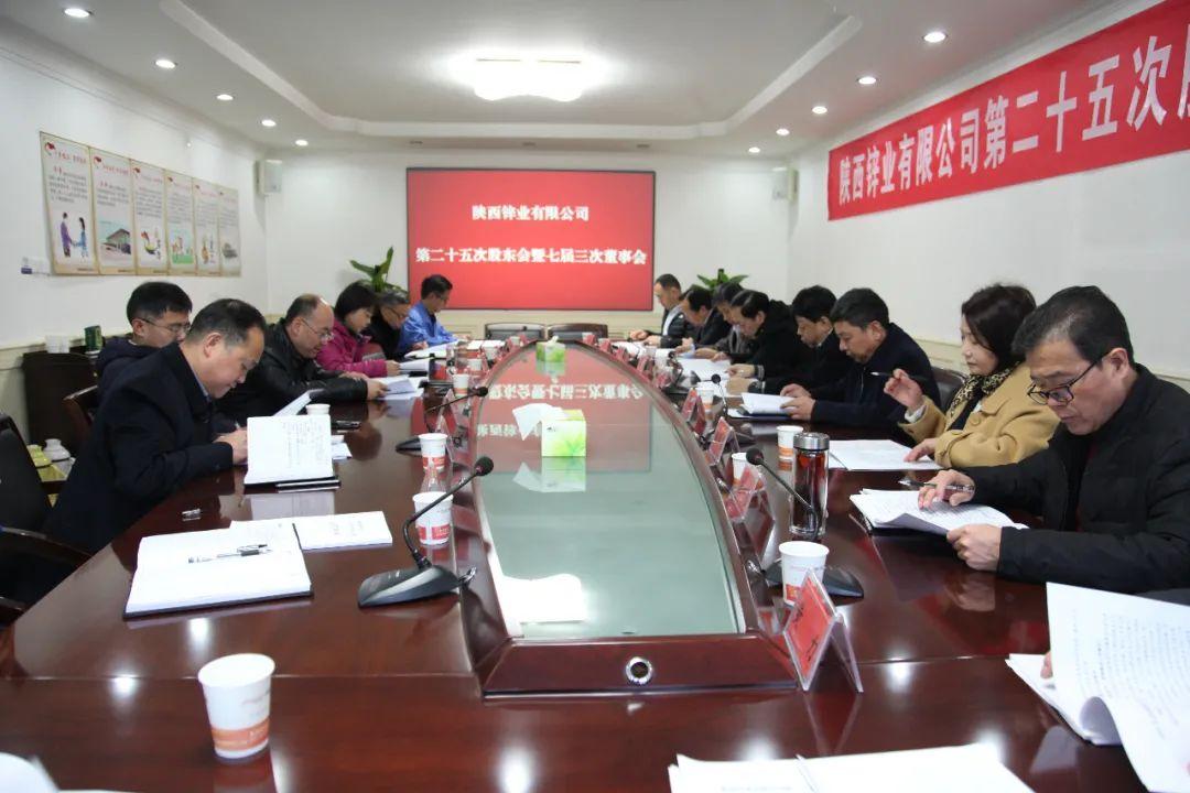 陕西锌业有限公司召开第二十五次股东会暨七届三次董事会