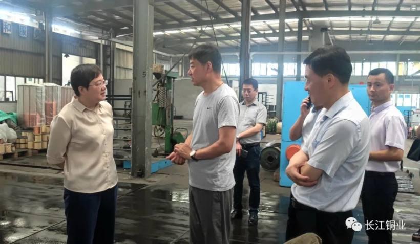 铜陵市副市长昌红梅到长江铜业公司视察指导工作