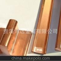 国标紫铜棒排 异形型材镀锡红铜导电铜母 厂家直销T1品质T23价格